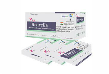 Brucella Rapid Test Kit