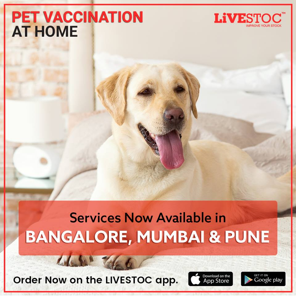 LiveStoc_Pet vaccination